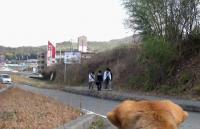 散歩20100228-3