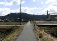 散歩20100326-3