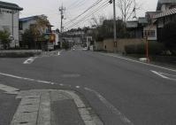散歩20100331-5