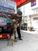 散歩20100528-5