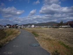 散歩20131126-4