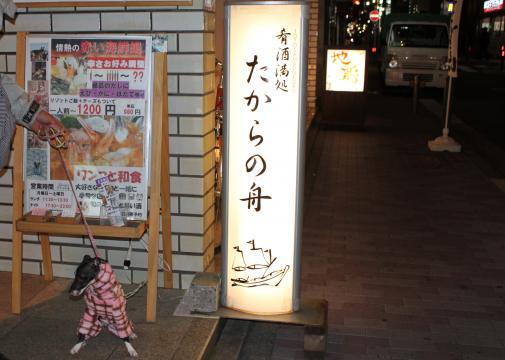 2_20110126105945.jpg