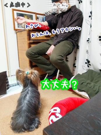 1_20100207141709.jpg