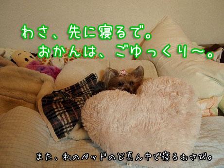1_20100315155229.jpg