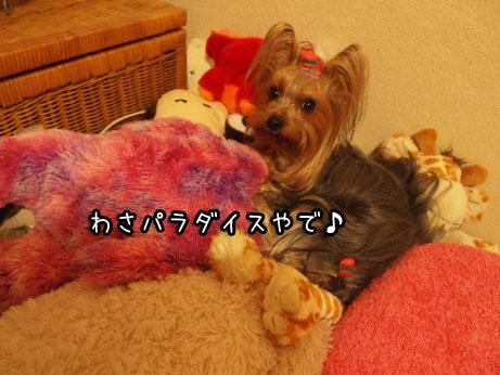 1_20100321190727.jpg