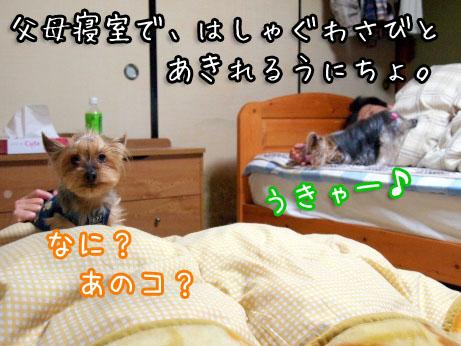 1_20100502160127.jpg