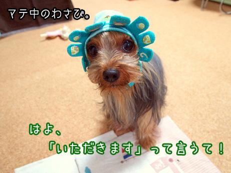 1_20100621193139.jpg