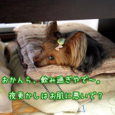 1_20100718193049.jpg