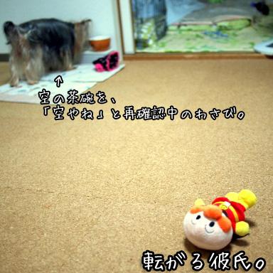 1_20100801194139.jpg