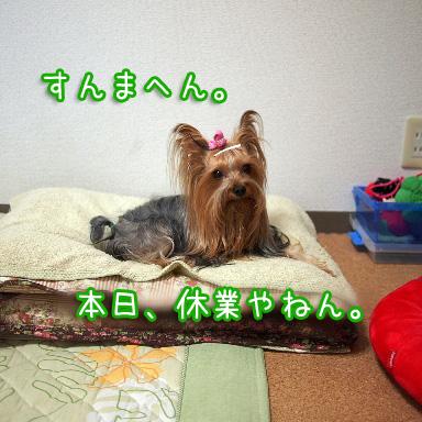1_20100812185440.jpg