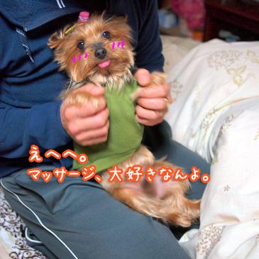 1_20110103184738.jpg