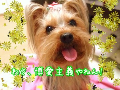 2_20100304174534.jpg