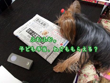 2_20100317095820.jpg