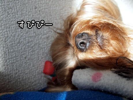 2_20100322195531.jpg