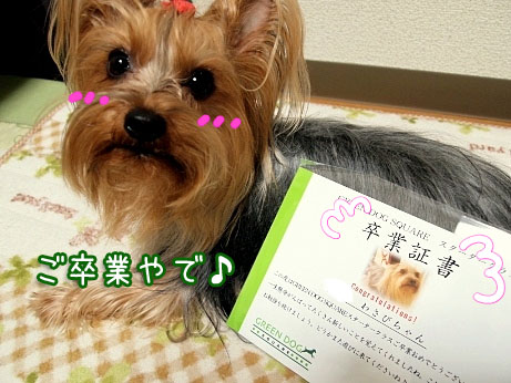 2_20100328193500.jpg