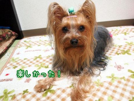 2_20100408193633.jpg