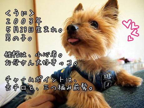 2_20100504172410.jpg