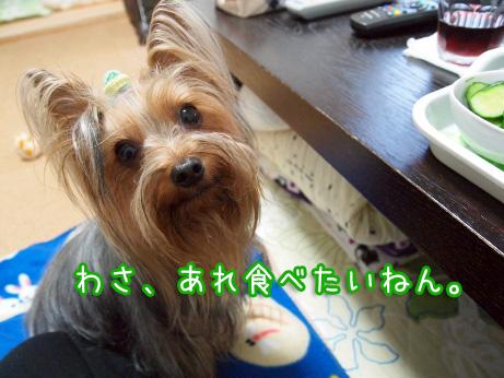 2_20100515191029.jpg