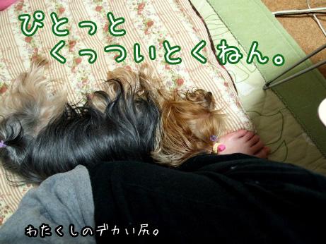 2_20100531193037.jpg