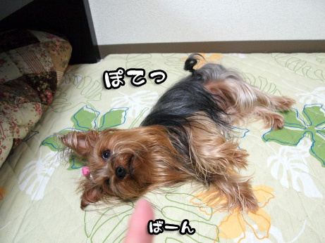 2_20100625154415.jpg