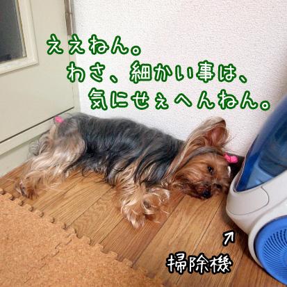 2_20100701164642.jpg