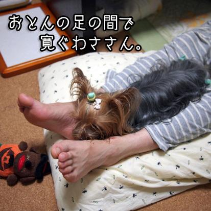 2_20100712153511.jpg