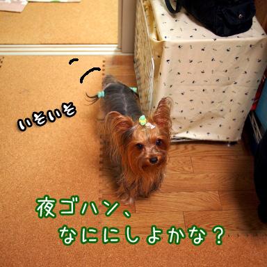 2_20100713192407.jpg