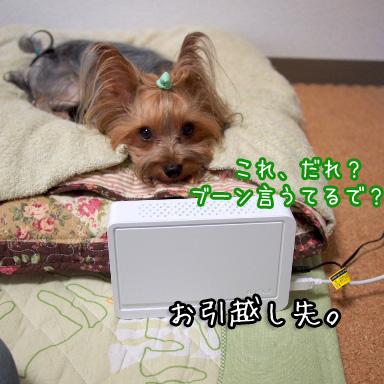 2_20100731193842.jpg
