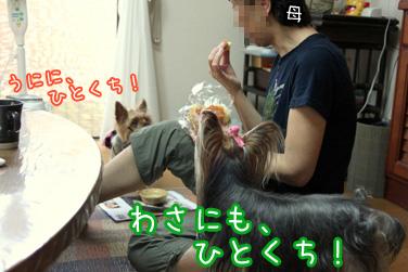 2_20100814210735.jpg