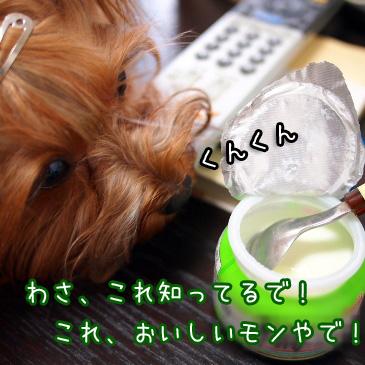 2_20100825200625.jpg