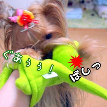 2_20100909200234.jpg