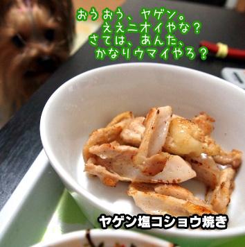 3_20100209194555.jpg