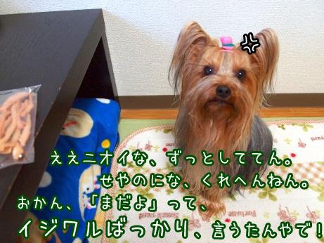 3_20100224170528.jpg