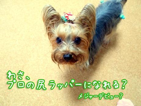 3_20100305181623.jpg