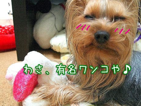 3_20100318191158.jpg
