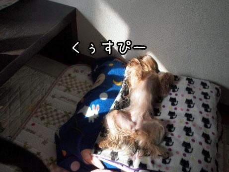 3_20100322195531.jpg