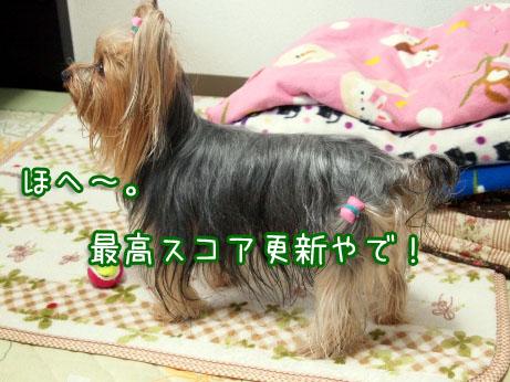 3_20100405192759.jpg