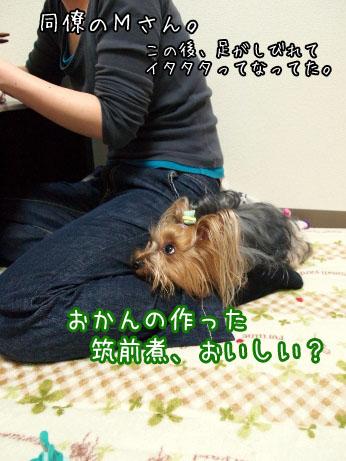 3_20100421104631.jpg