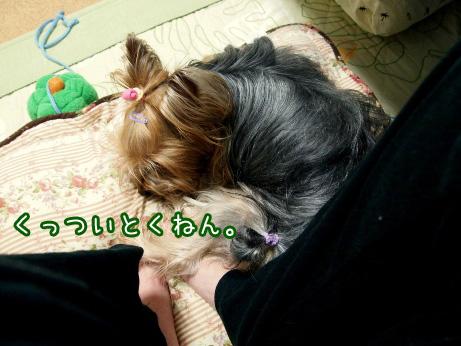 3_20100531193037.jpg
