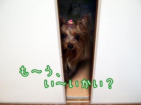 3_20100617183423.jpg