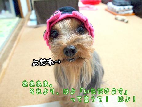 3_20100623194640.jpg
