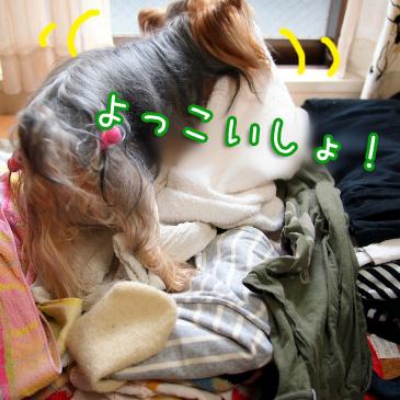 3_20100823191044.jpg