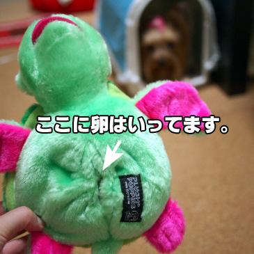 3_20100911192600.jpg