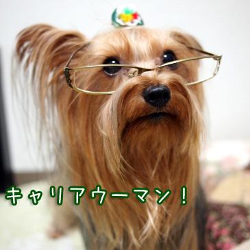 3_20100925195119.jpg