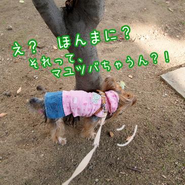 3_20101014201429.jpg