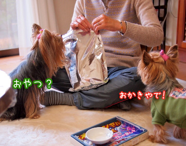 3_20101231200642.jpg