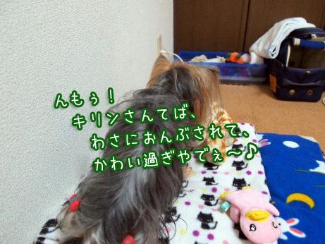 4_20100326193503.jpg