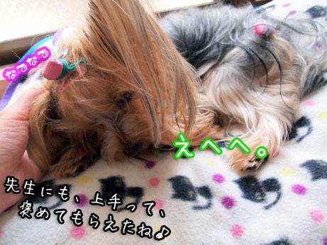 4_20100404150834.jpg