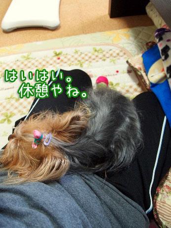 4_20100405192759.jpg