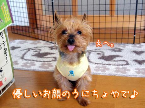 4_20100506180233.jpg